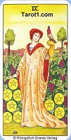 Nine of Pentacles Tarot card meaning