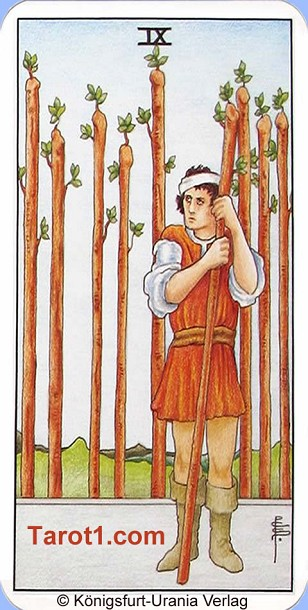 Tomorrow's Aries Horoscope Nine of Wands